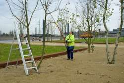 Belval 2007 : Place de l'université